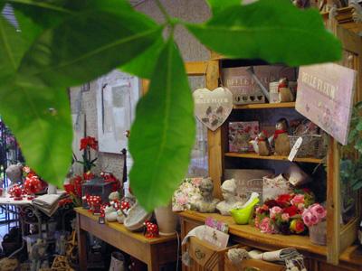 Magasin de fleurs jambes namur bouquets et d coration for Magasin jardin deco