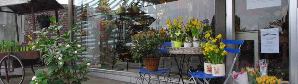 fleurs marie fleuriste 5100 jambes namur. Black Bedroom Furniture Sets. Home Design Ideas