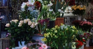 Bouquets et montages floraux